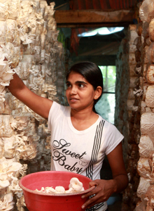 Young woman at work in Sri Lanka. © Lakshman Nadaraja / World Bank